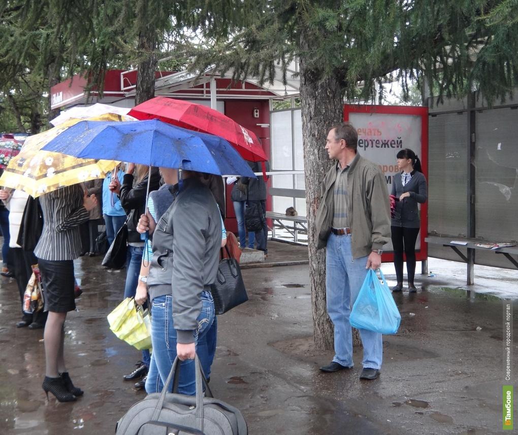 Выходные в Тамбове будут холодными и дождливыми