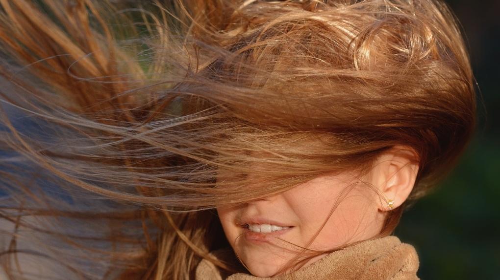 Экстренное предупреждение: в Тамбове 27 июня ожидаются порывы ветра до 18 метров в секунду