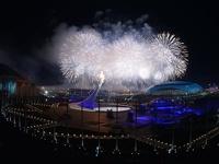 «Браво, Россия!» Церемония открытия Олимпиады в Сочи прогремела на весь мир