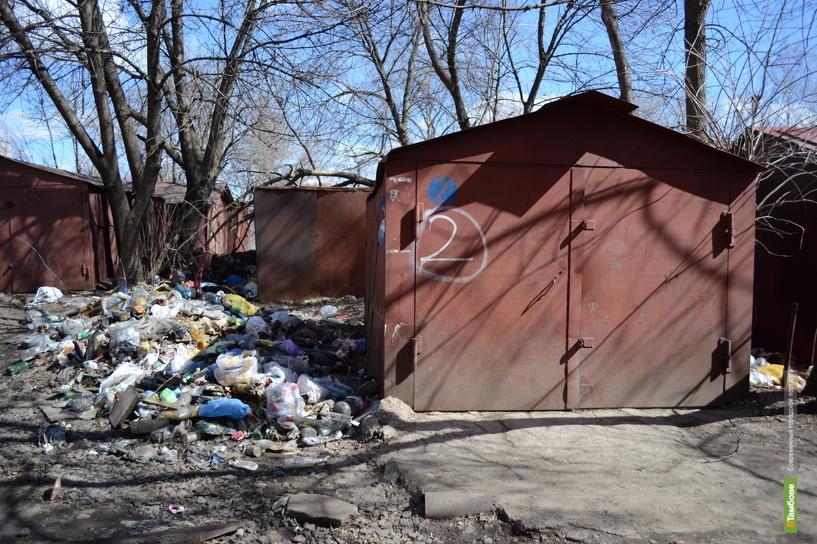 Тамбовчане смогут жаловаться на мусор в городе