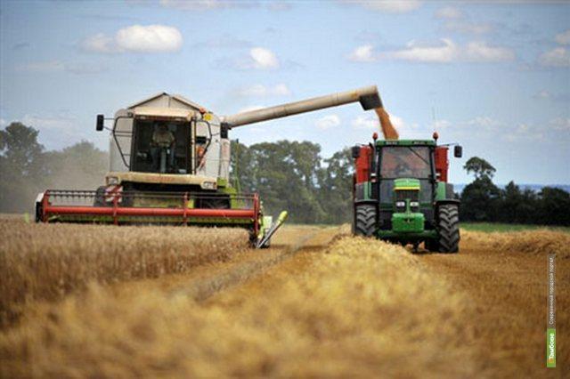 С тамбовских полей планируют собрать более 3 миллионов тонн зерна