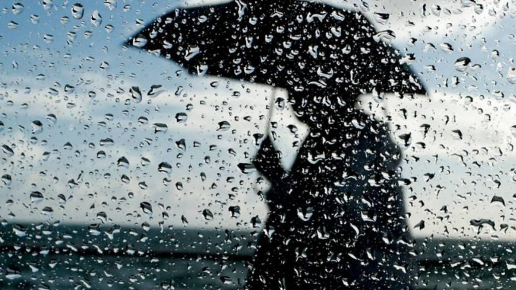 Начало июля в Тамбове обещает быть дождливым