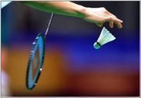В Тамбове пройдет областной чемпионат по бадминтону