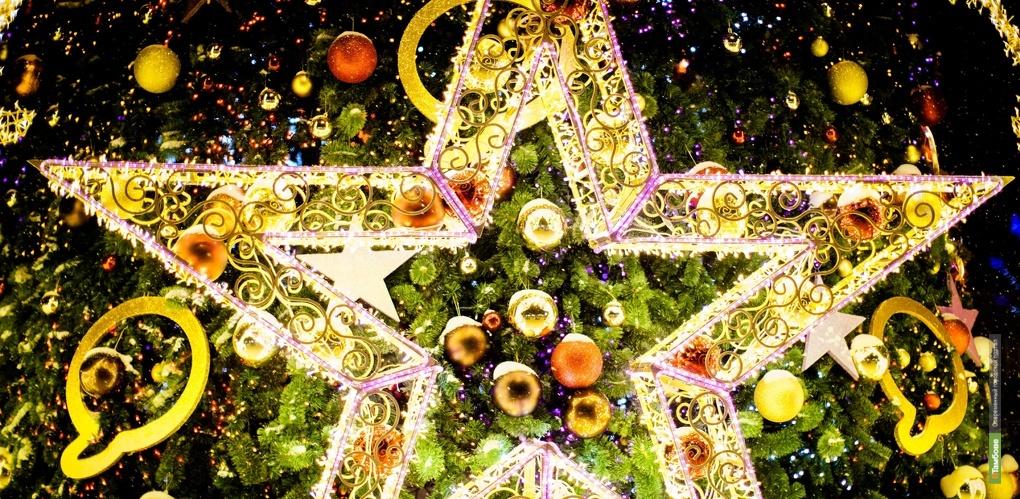 Устанавливать ёлки в городе начнут уже 1 декабря