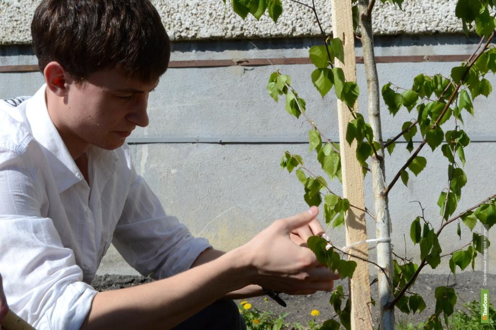 Экологи признали Тамбовщину самым «зеленым» регионом
