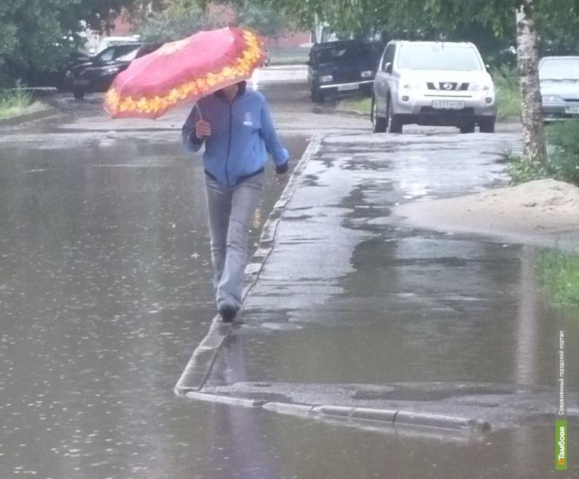 Тамбовчан ждут дождливые выходные