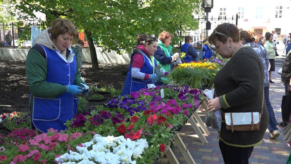 Самым популярным овощем на Фестивале цветов стал баклажан