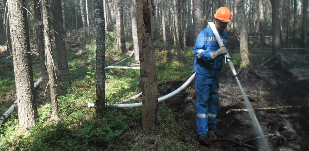Работники лесхоза разработали план тушения лесных пожаров на 2017 год