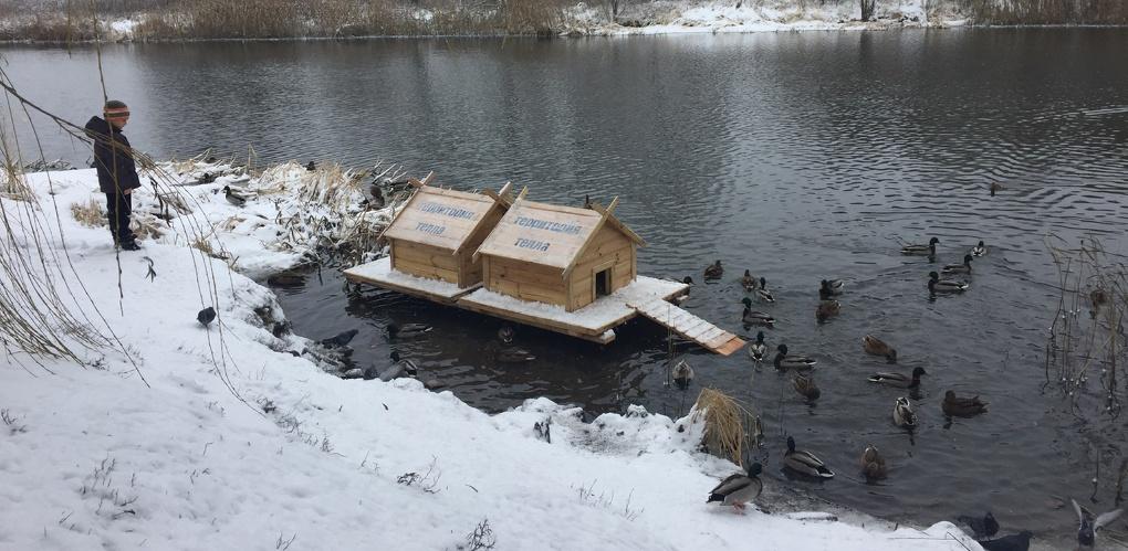 Комфортно и тепло: для уток на Набережной установили два домика