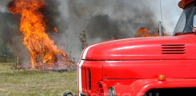 К тушению лесных пожаров будет привлечено более 500 единиц спецтехники