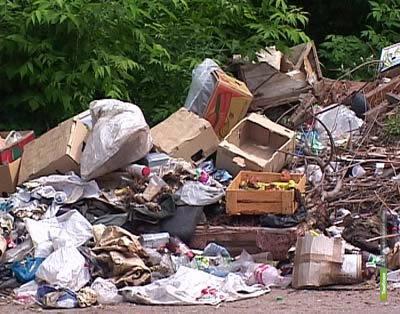Тамбовские прокуроры очистили Моршанск от мусора