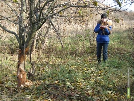 Студенты-экологи ТГУ вернулись из экспедиции по берегам Дона