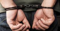 Тамбовские полицейские раскрыли дачную кражу