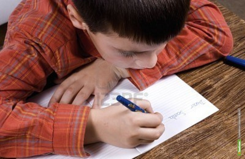 Жалобное письмо юного тамбовчанина проверили полицейские