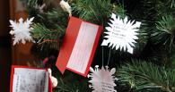 Тамбовчане организуют свое собственное «Рождественское чудо»