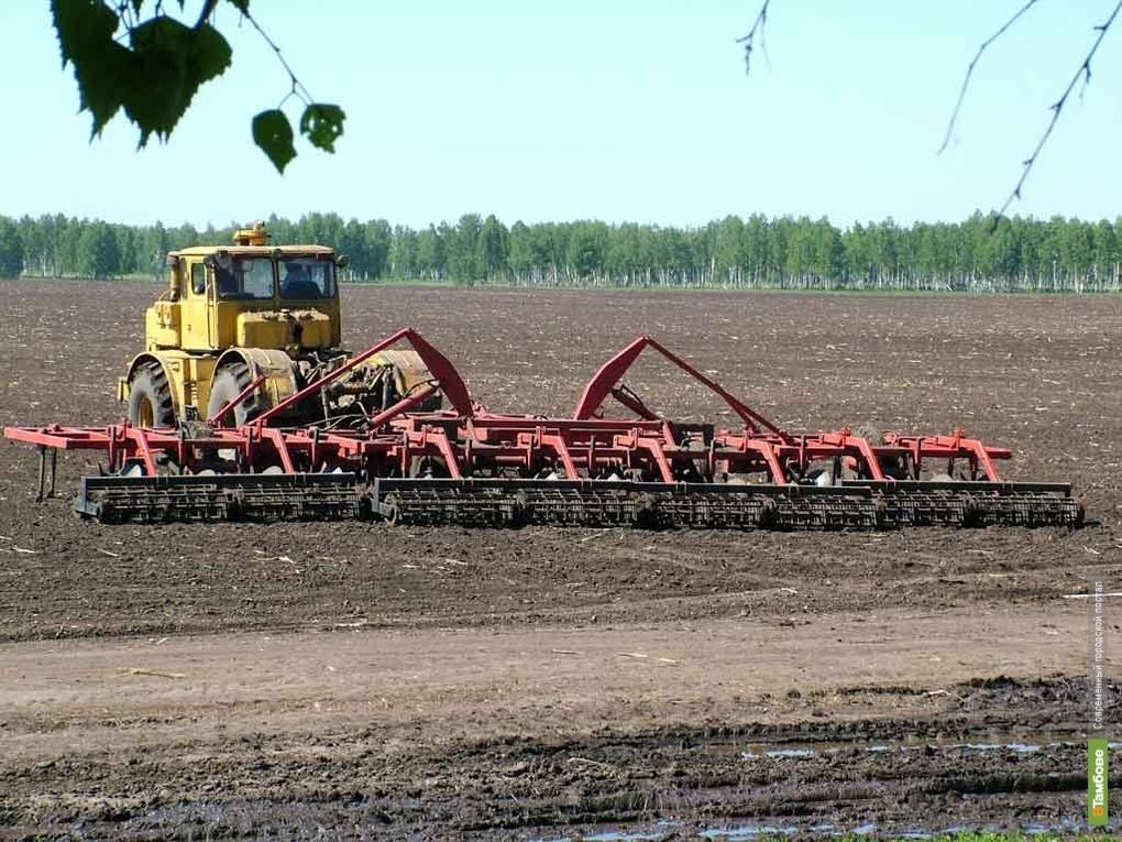 На тамбовский агропромкомплекс потратят больше 3 миллиардов рублей