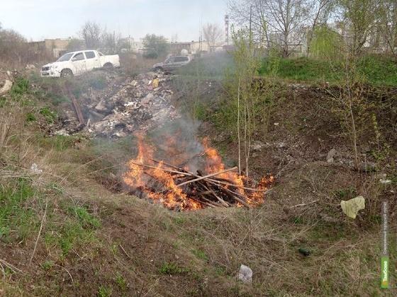 Наркополицейские Тамбовщины сожгли 24 тонны конопли