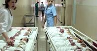 В регионе растёт рождаемость и снижается смертность населения