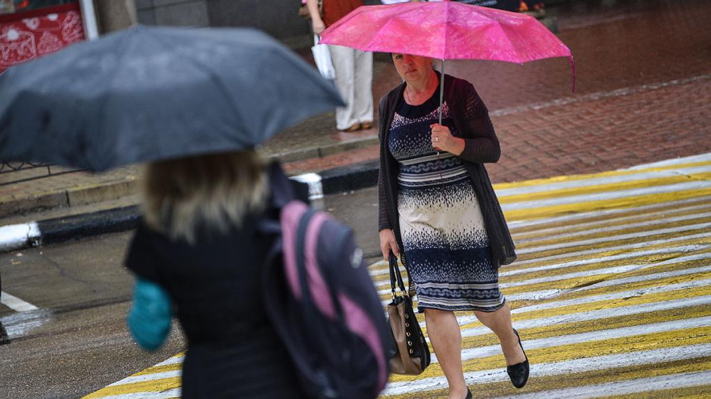 Похолодание и дожди: погода в конце недели жителей Тамбовщины не порадует