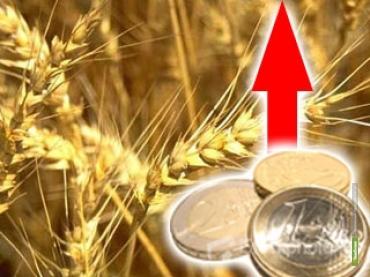 Что подорожает в ближайшее время из-за падения рубля?
