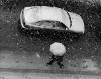 Зимняя погода в мире начинает впадать в крайности