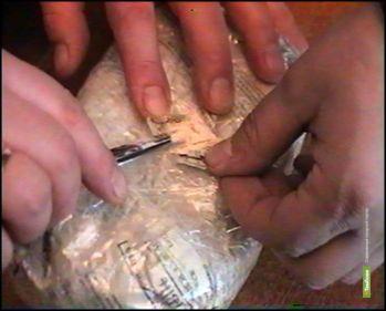 Под Тамбовом полицейские задержали наркокурьеров