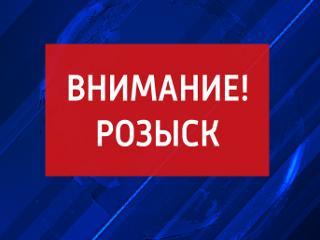 Тамбовские полицейские разыскивают свидетелей ДТП