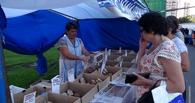 В Тамбове откроется международная ярмарка