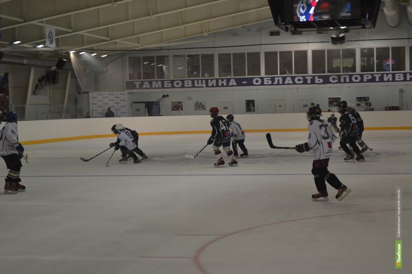 В регионе появятся ещё три ледовые арены
