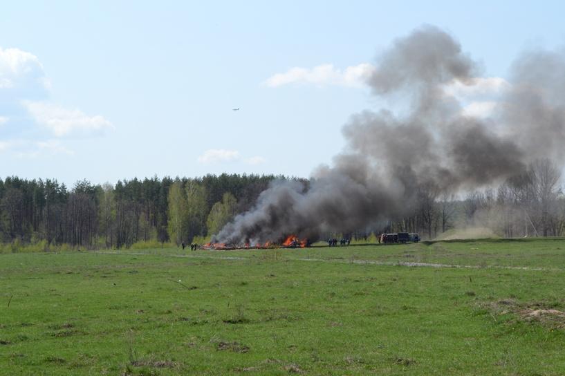 В посёлке Новая Ляда сгорело пять гектаров леса