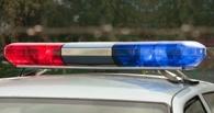 В Тамбове полицейские час гонялись за пьяным угонщиком
