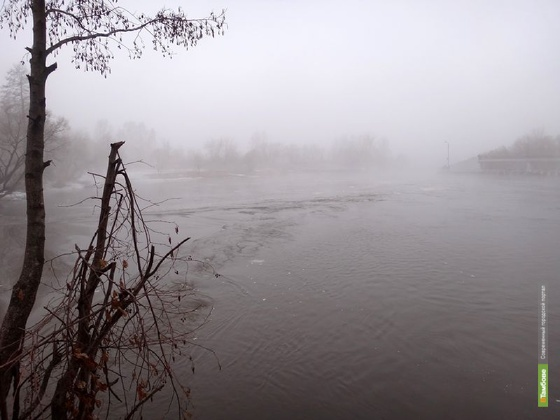 В Токарёвском районе утонул ребёнок