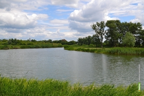 Тамбовчане расчистят русло реки Студенка