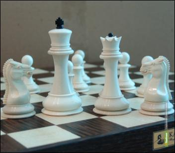 В Тамбове разыграют титул шахматного чемпиона