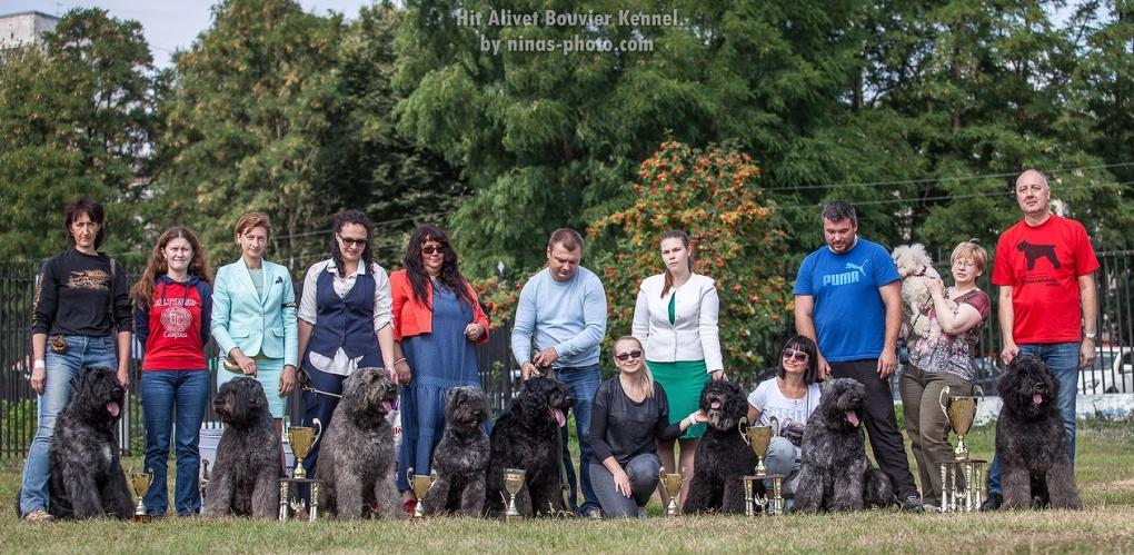 День бувье: в Тамбове прошла традиционная собачья выставка