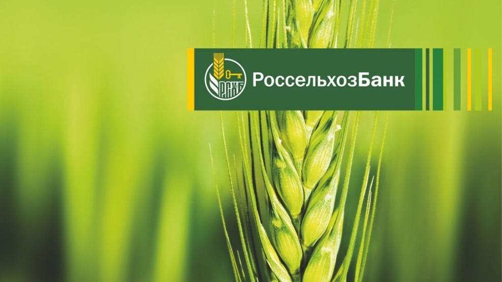 Владимирская область может стать одним из первых участников программы льготной сельской ипотеки