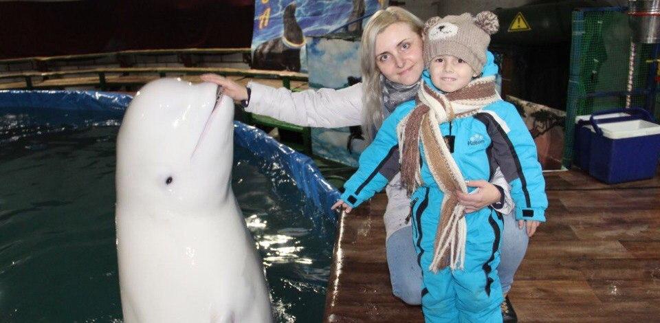 Почувствуй энергию моря! Увлекательное Аквашоу с дельфинами и морским котиком
