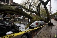 Американцы, пострадавшие от урагана «Сэнди», получат 50 млрд долларов