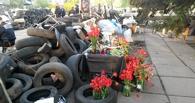 В городах Украины продолжаются беспорядки: есть жертвы
