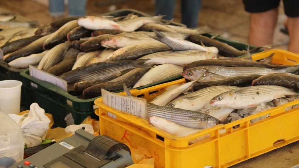 И рыбку съесть? В Тамбовской области изъяли более 250 килограммов опасных для здоровья рыбы и креветок