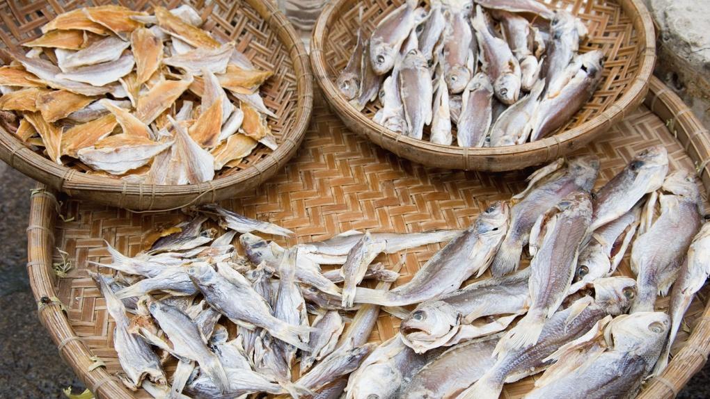 Через рыбу передаются паразиты! Сейчас это происходит на всей территории страны