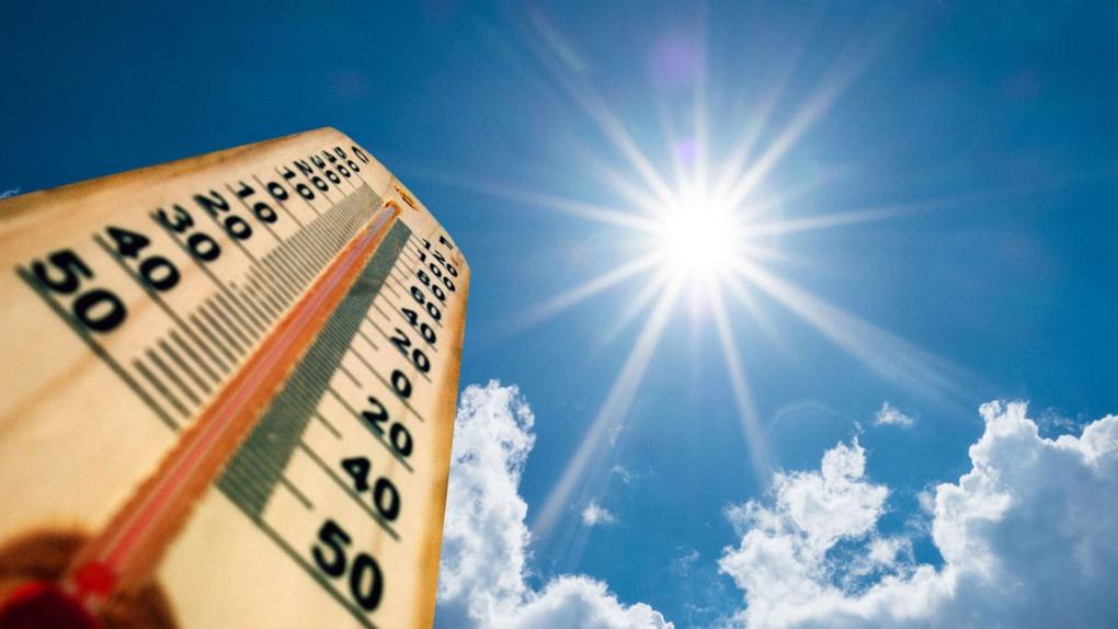 Экстренное предупреждение: в Тамбове ожидается аномальная жара
