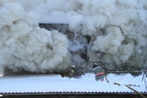 В Мичуринском районе угарным газом отравилась тамбовчанка