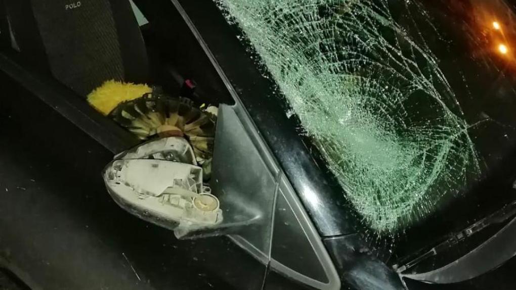 В Тамбове насмерть сбили пешехода