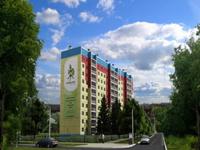 Дмитрий Медведев предложил стране строить как в Челябинске