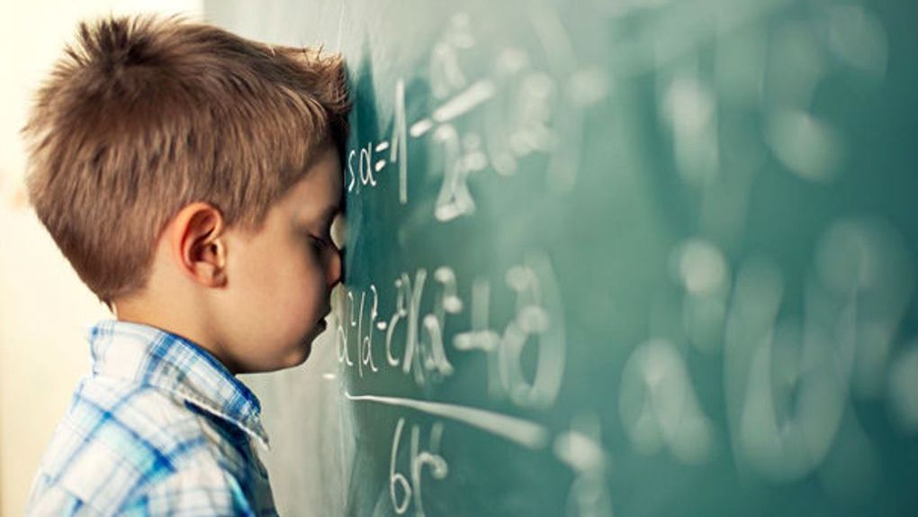 Новый учебный год в Тамбовской области начнётся в обычном режиме
