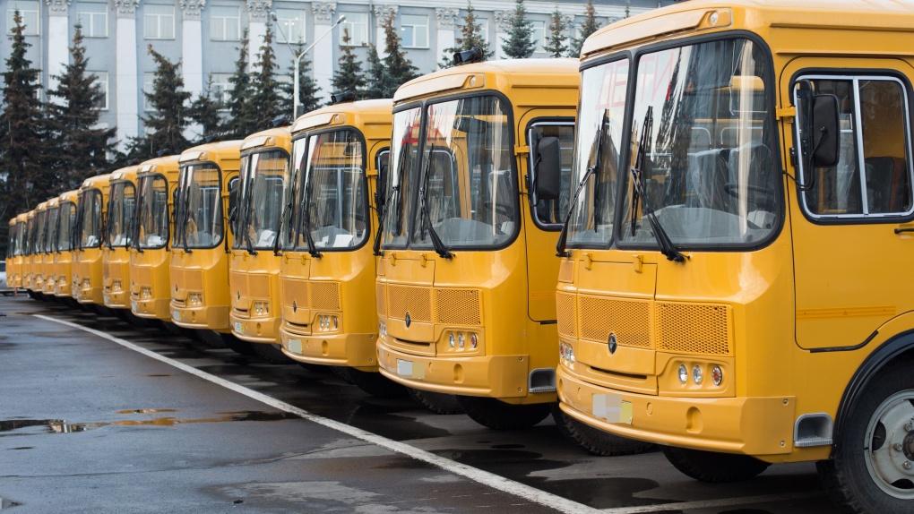 В этом году для тамбовских школ закупят 69 новых автобусов
