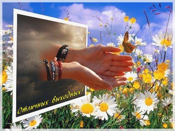 Выходные с ВТамбове.ру: выборы — сердцу не прикажешь