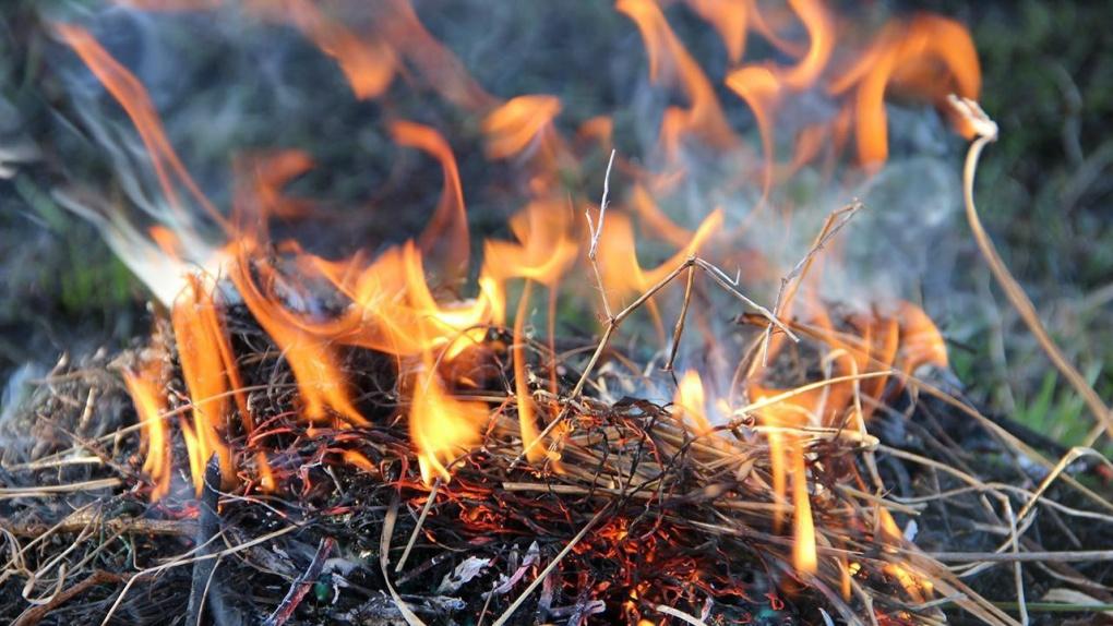 В Тамбовской области объявили особый противопожарный режим