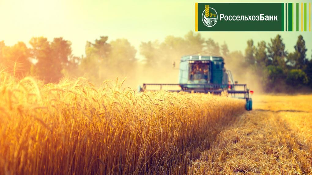 Россельхозбанк в Тамбове: популярность кредитов на сезонные работы выросла на 15%